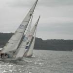 Worldchampionship Sailing on alert after shark sighting
