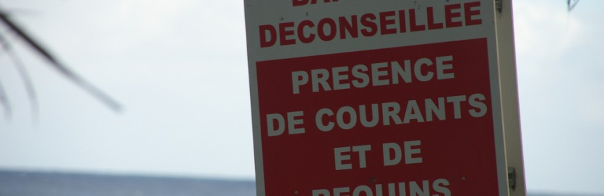 Shark warning sign on beach at Reunion Island. Photo: Flickr Creative Commons/Simon Bonaventure.