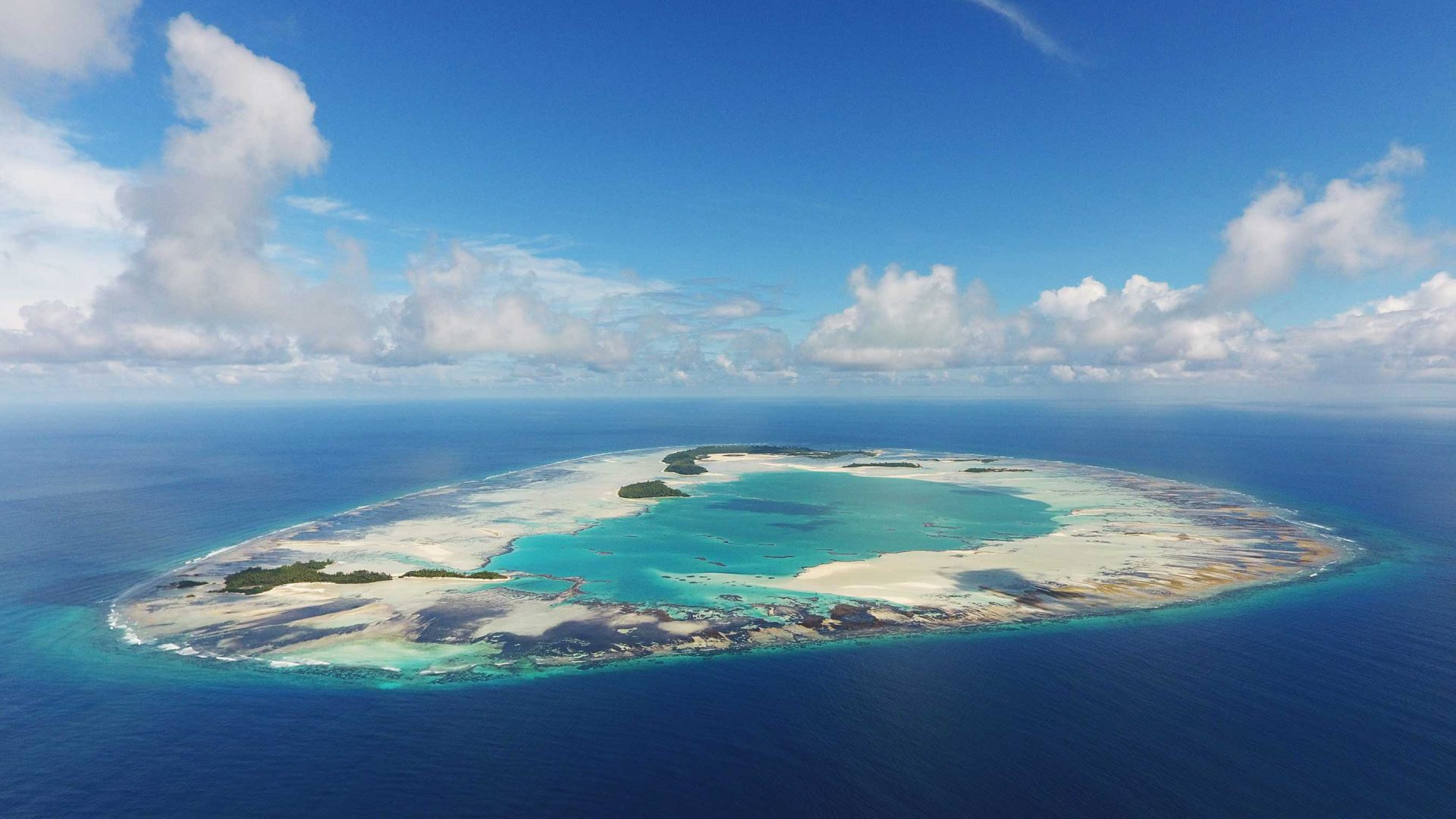 St Joseph Atoll with the flats exposed at low tide Photo by Michael Scholl |© Save Our Seas Foundation