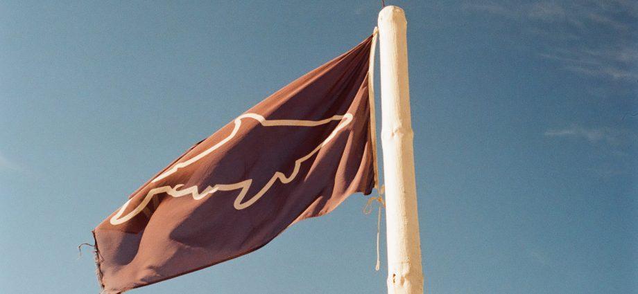 Shark flag. Photo: Philippe Rose/Unsplash.
